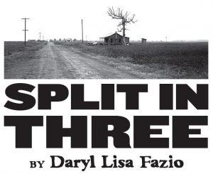 SPLIT IN THREE (by Daryl Lisa Fazio)