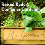 How to Build a Better Garden