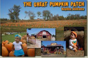 The Great Pumpkin Patch Halloween Festival
