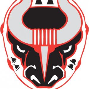 Hockey: Birmingham Bulls vs Knoxville