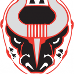 Hockey: Birmingham Bulls vs Roanoke