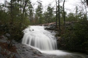 Southeastern Outings dayhike at the Moss Rock Pres...