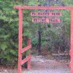 Palisades Park Hike