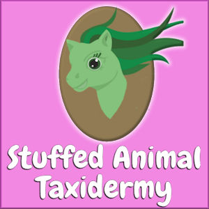 Stuffed Animal Taxidermy