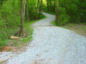 Southeastern Outings dayhike on the Montevallo Parks Trail in Montevallo, Alabama