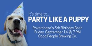 Party Like A Puppy!