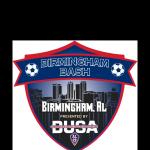 Birmingham BASH Soccer Tournament