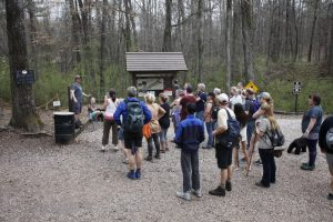 Guided Hike Series