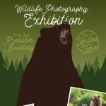 Wildlife Photography Exhibition : Lindsay Donald