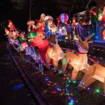 Fresh Air Family presents Wacky Tacky Light Tour