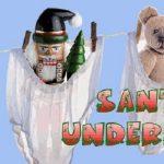 Santa's Underpants