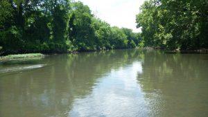 Monthly Nature Program: Alabama Aquatic Biodiversi...