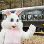 Cottontail Express