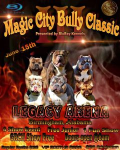 ABKC Magic City Bully Classic III