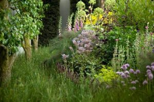 From Kitchen Gardens to Flora of the Civil War