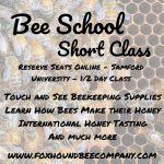 Bee School - Short Class