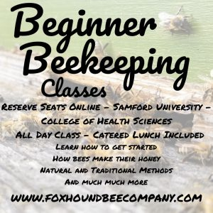 Beginner Beekeeping Classes