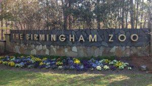 Birmingham Zoo To You