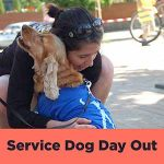 Service Dog Day Out
