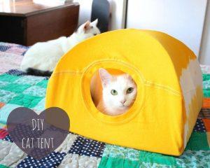 Cat Craft Club: DIY Cat Tent
