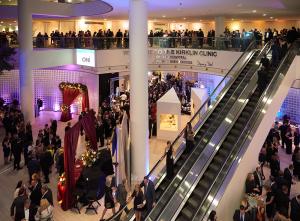 2020 ArtBLINK Gala