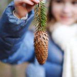 Little Seeds: Winter Garden Magic