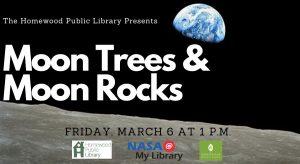Moon Trees & Moon Rocks