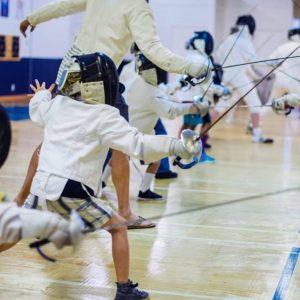 Free Fencing