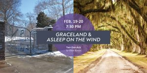 Graceland and Asleep on the Wind by Ellen Byron