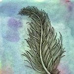 Zentangle Feather Class