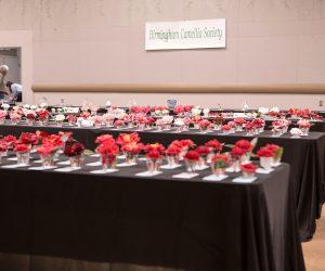 71st Annual Camellia Show