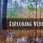 Exploring Vernal Pools
