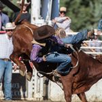 Shelby County Cattlemens Rodeo