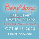 Babypalooza Virtual Baby Expo - Birmingham, AL