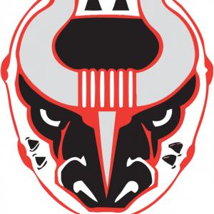Hockey: Birmingham Bulls vs Macon Mayhem