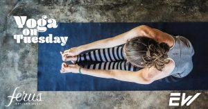 Yoga and Brews at Ferus Artisan Ales