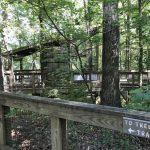 Gosse Nature Walk: Pelham