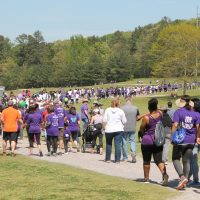 2017 Walk to End Lupus Now