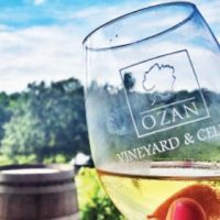 Art in the Vineyard @ Ozan Winery