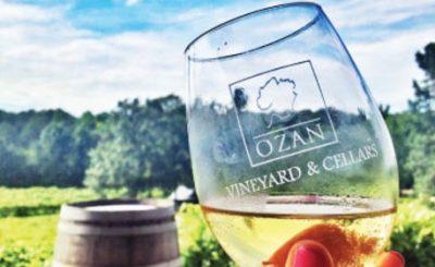 Art in the Vineyard @ Ozan Winery