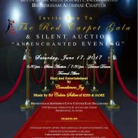 2017 Red Carpet Gala and Silent Auction