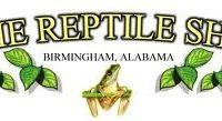 Dixie Reptile Show