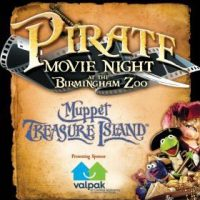 Pirate Movie Night