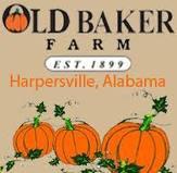 Old Baker Farm Harvest Season
