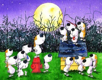 Barking at the Moon Festival and Parade