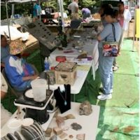 43rd Annual Tannehill Gem, Mineral, Fossil & Jewelry Show