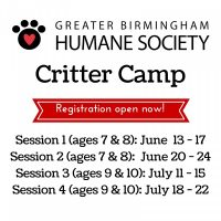 Critter Camp at the Greater Birmingham Humane Society