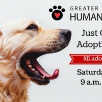 Just One Day Adoption Event
