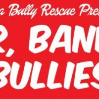 Beer Bands & Bullies 2016
