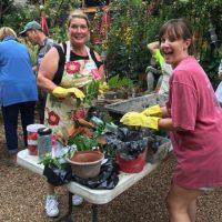 Creating Hypertufa Planters